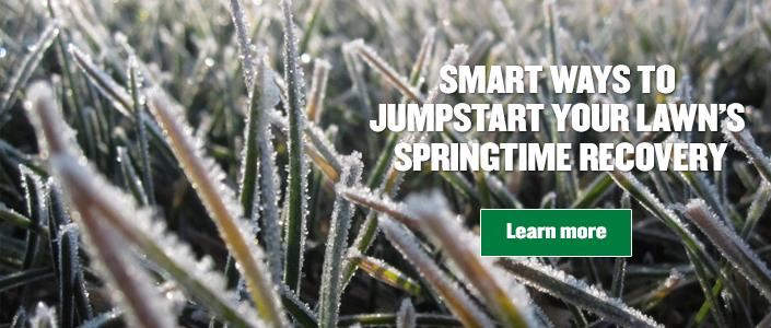 Jumpstart your lawn tile with frosted grass