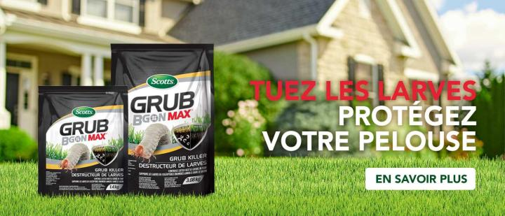 Kill grubs save your lawn.