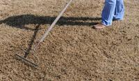 Raking a lawn before planting new grass seed.
