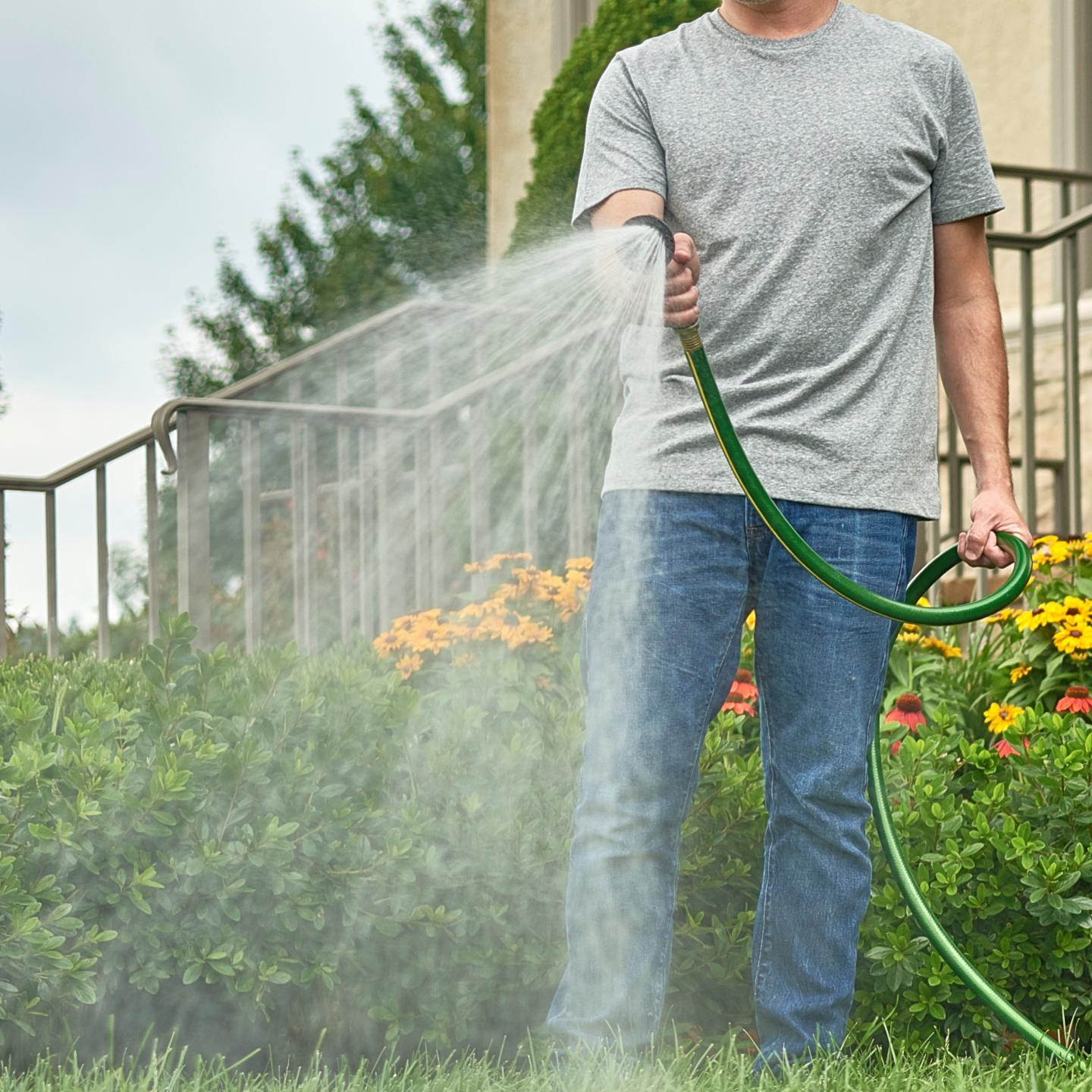Man using hose to water lawn.