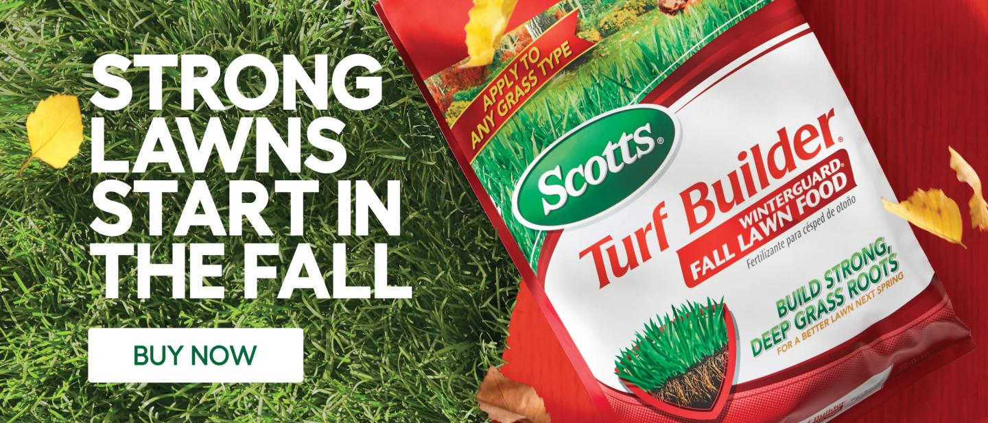Scotts turfbuilder winter guard with caption- strong lawns start in the fall