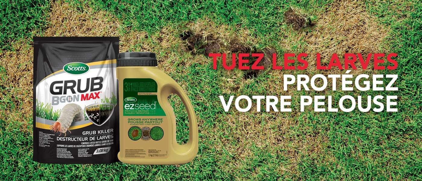 Kill grubs. Save your lawn.