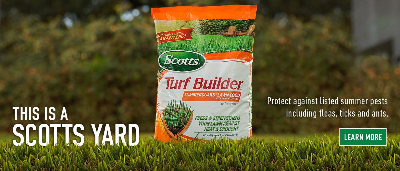 Lawn Care Tips Products And Maintenance For Your Lawn