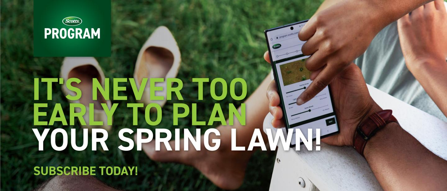 People point to a lawn care subscription page on a smartphone