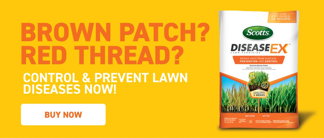 Brown Patch? Red Thread? Control & Prevent Lawn Diseases Now: Bag of Scotts® DiseaseEx™ Lawn Fungicide on yellow background