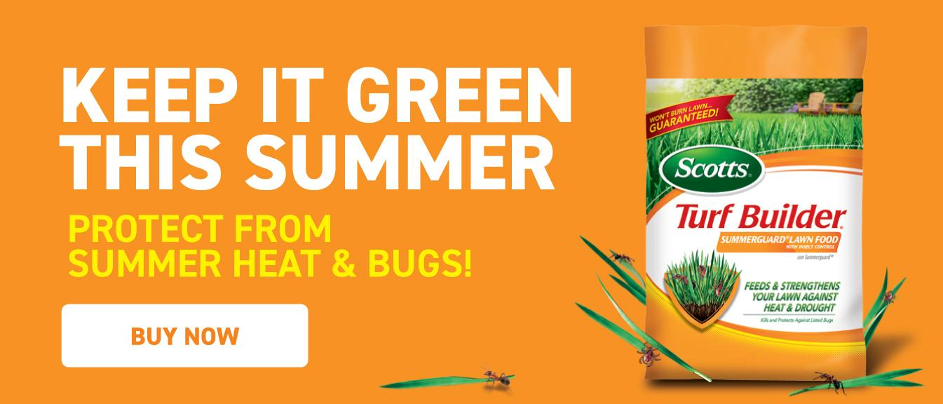 Keep It Green This Summer – Protect from Summer Heat & Bugs: Bag of Scotts® Turf Builder® Summerguard® Lawn Food with Insect Control surrounded by insects on blades of grass on orange background