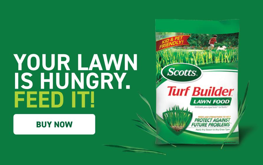 Your Lawn Is Hungry, Feed It: bag of Scotts® Turf Builder® Southern Lawn Food