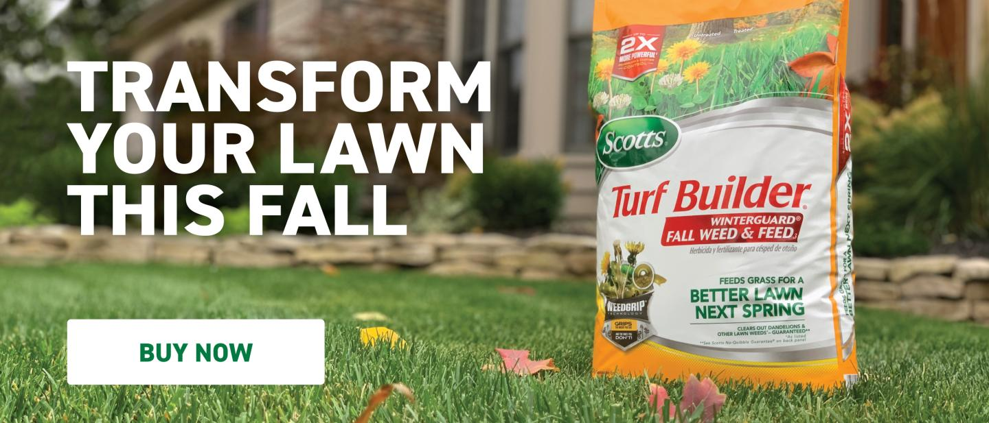 Continue this summer with Winter-guard. Scotts® Turf Builder® WinterGuard® Fall Weed & Feed₃