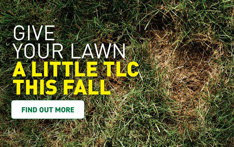 Give your lawn a little TLC this year. Find out more.