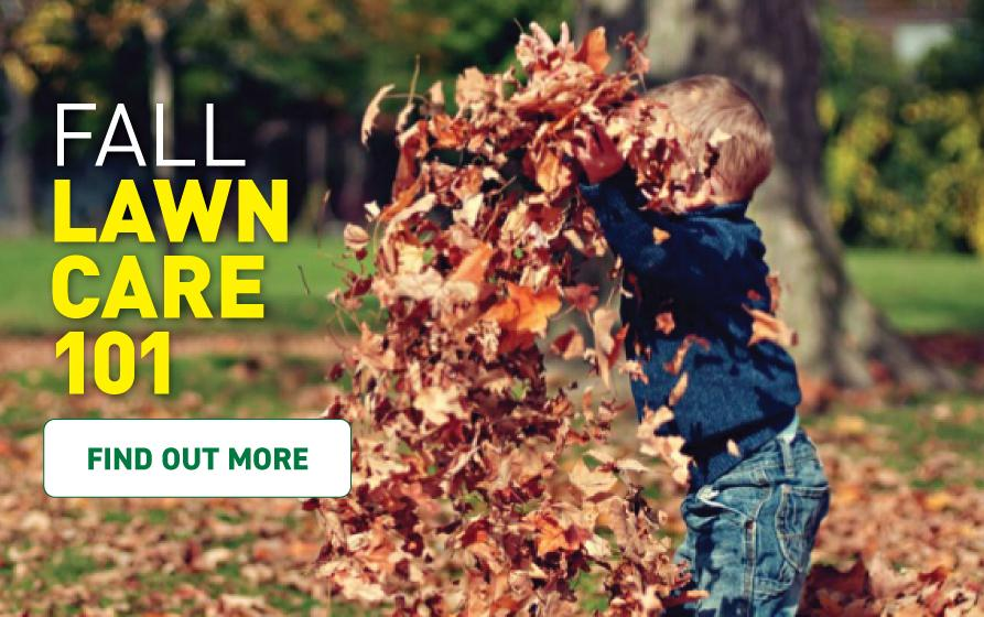 Fall lawn care 101. Find out more.
