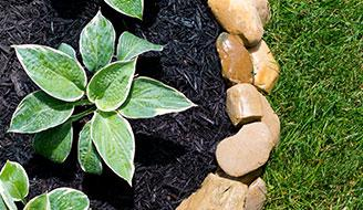 Black Mulch - How to Control Weeds Naturally with Mulch