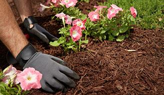 Red Mulch - How to Control Weeds Naturally with Mulch