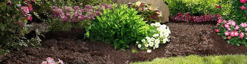 categorypage_headerimage_mulch_2017