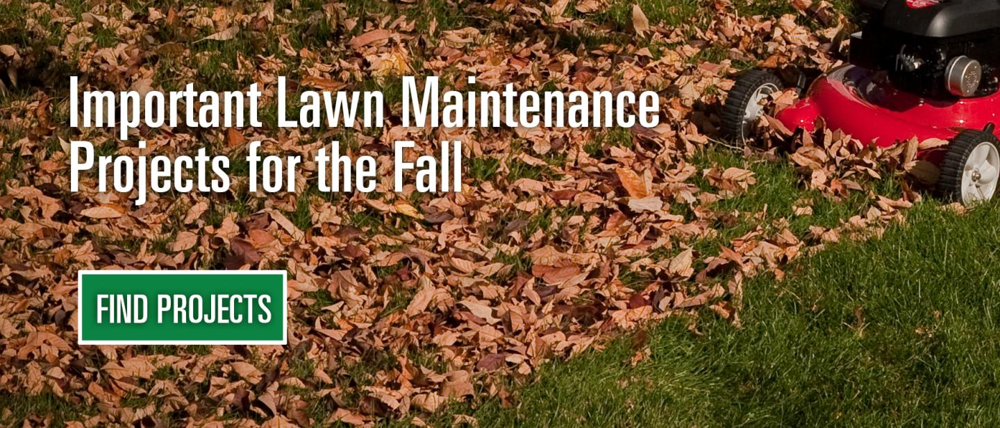 fall lawn projects