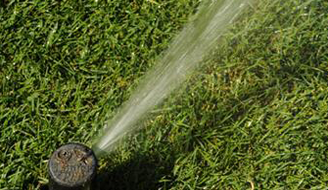 A sprinkler watering a green lawn.