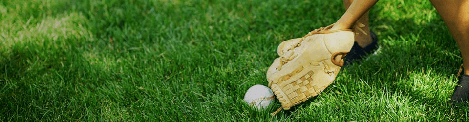 Baseball Glove and Ball in Green Grass