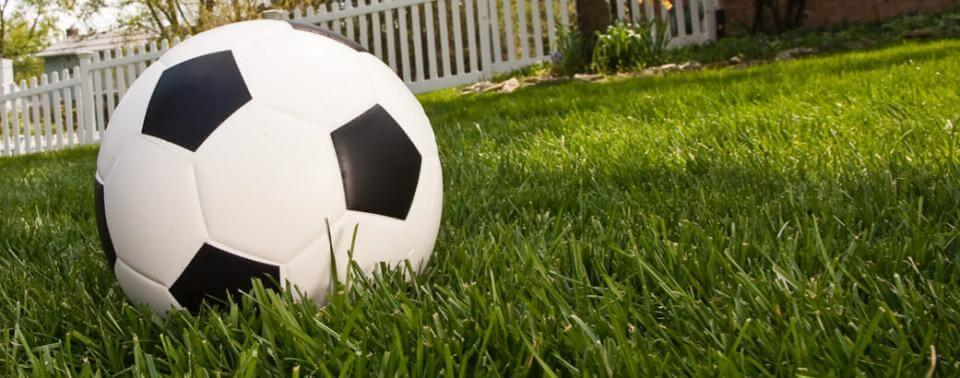 Soccer Ball in Green Gass