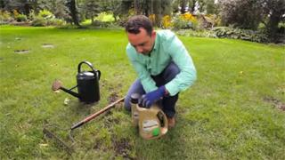 Lawn Care: Lawn Patch and Repair