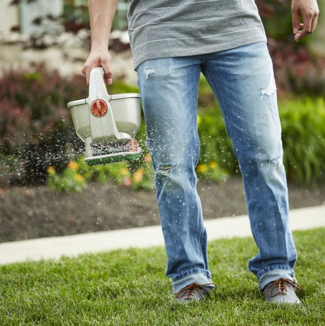 User spreading seed across lawn