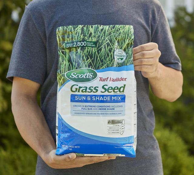 Image of a man holding a bag of Scotts Turf Builder Grass Seed Sun & Shade Mix