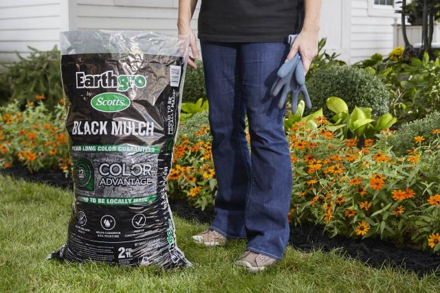 Consumer standing next to black mulch packaging on lawn