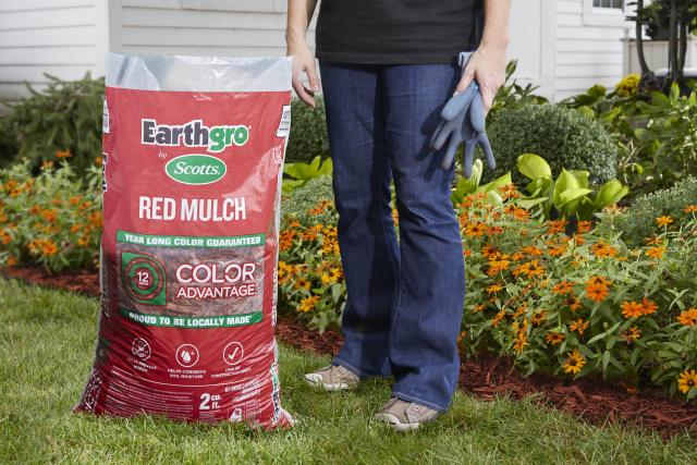 Consumer standing next to red mulch product package on lawn