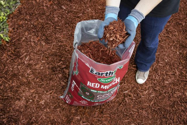 Consumer removing red mulch from packaging to use on lawn