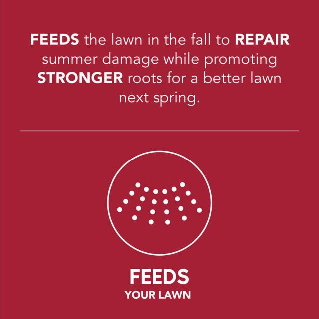 Image with a caption- feeds the lawn in the fall to repair summer damage while promoting stronger roots for a better lawn next spring