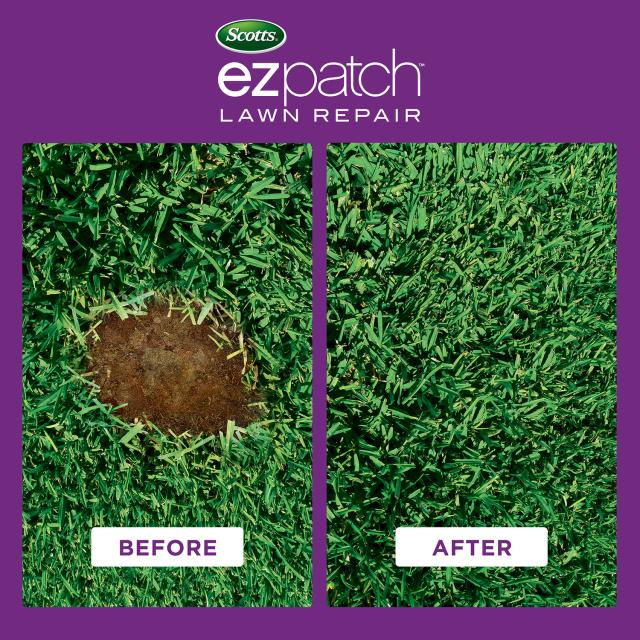 Scotts EZ Patch Lawn Repair For St. Augustine Lawns Before and After