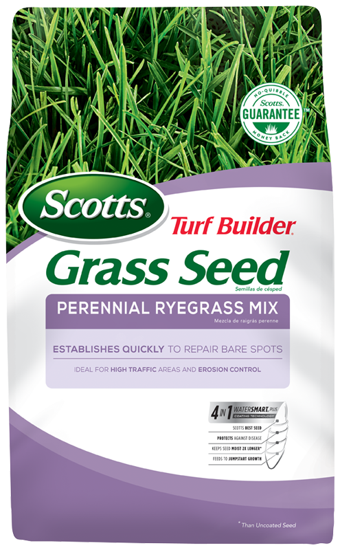 Scotts® Turf Builder® Grass Seed Perennial Ryegrass Mix