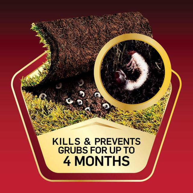 Kills and Prevents Grub for up to four months