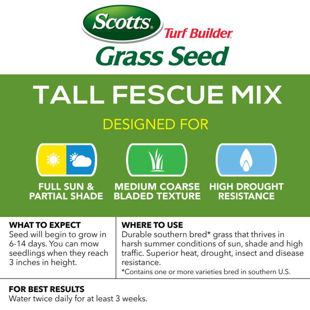 Tall Fescue Mix