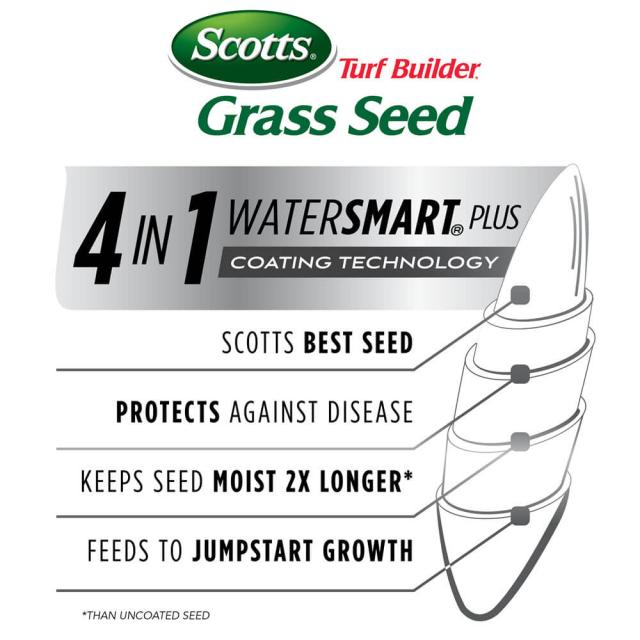 Illustration showing how water smart seeds work