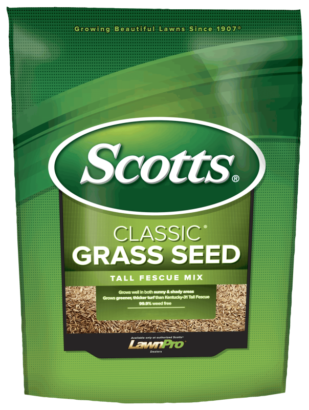 Bag of Scotts Classic Grass Seed Tall Fescue Mix
