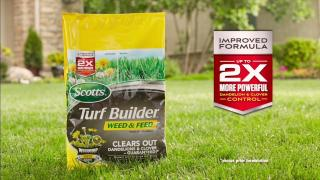 How to use Scotts Turf Builder Weed & Feed