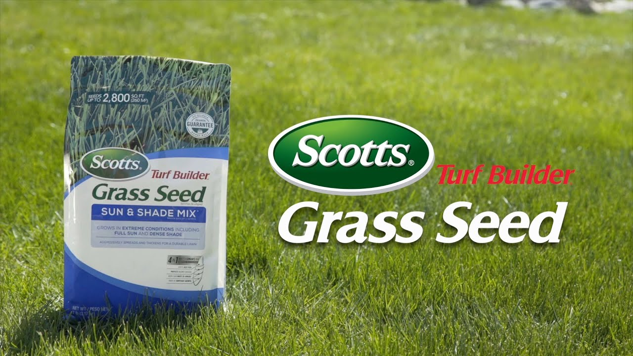 When To Plant Grass Seed In Spring Illinois